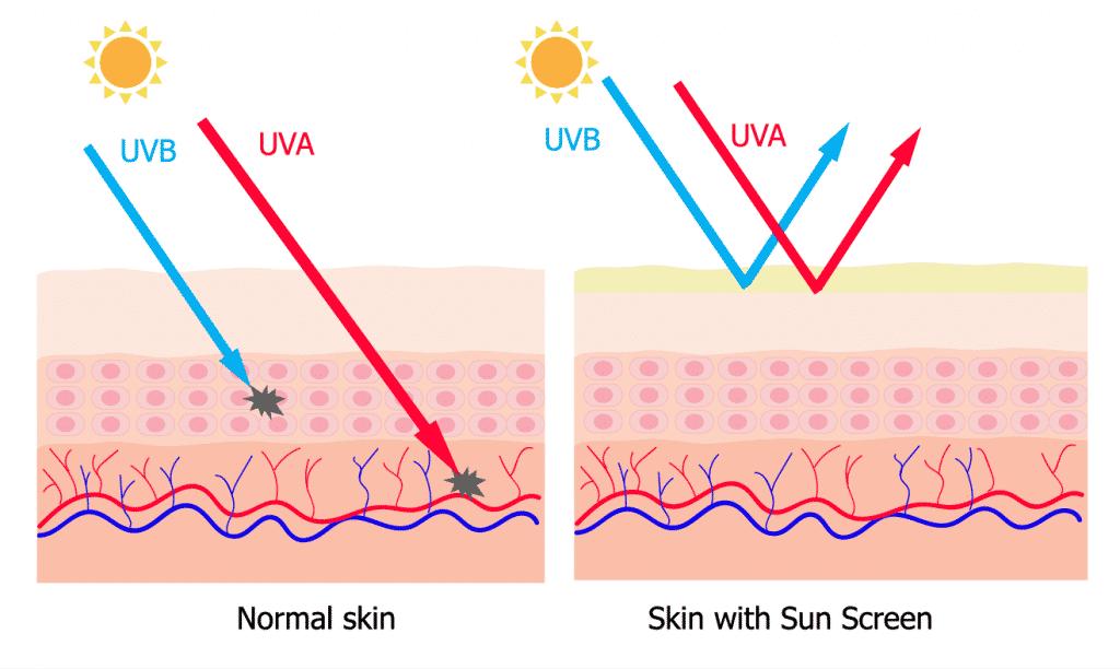 Crème Solaire - article de blog - radiations - UV - explications - Secrets de Miel