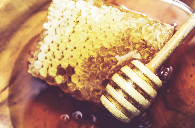 apiculture, abeilles, ruche, miel